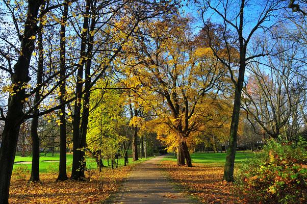 Kur-Park von Bad Homburg im Herbst