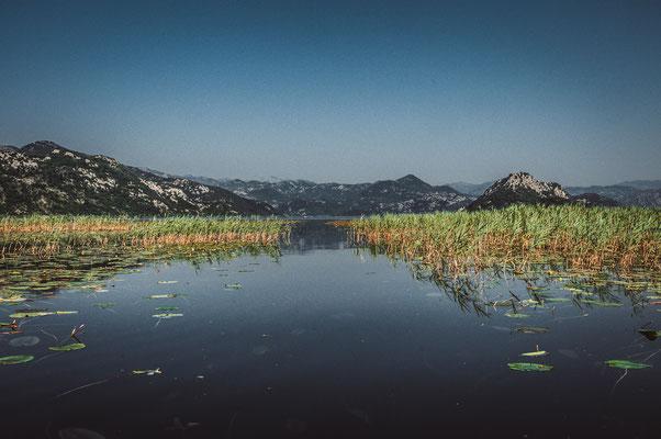 Von Menschen erschaffene Wasserstraßen durch die Seerosen am Skadarsee