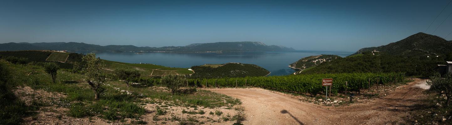 Kroatiens Weinberge - Panorama