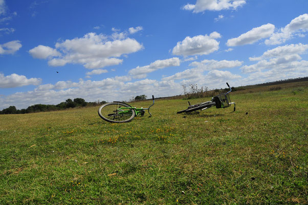 Kleine Rast mit Fahrrädern am See auf einer Wiese