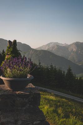 Bei Berggasthof Biberg in Österreich