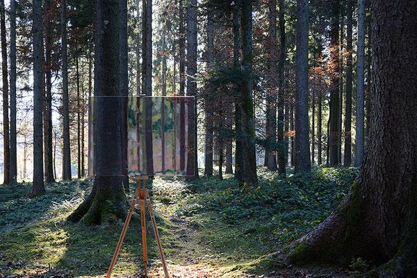Herbst, 2015, Fine Art-Print/Photopaper/Aluminium, 60x90