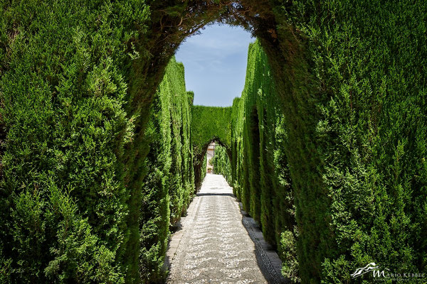 In den Gärten der Alhambra