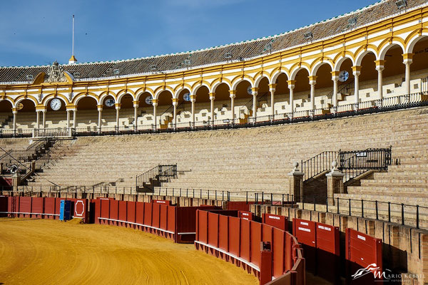 In der Plaza de Toros in Sevilla