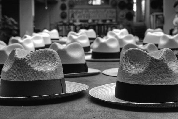 Panamahüte in Montecristi