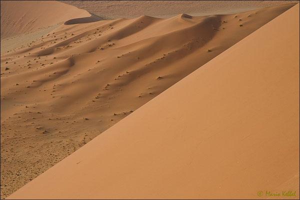 Blick von der Düne 45 im Sossusvlei Gebiet