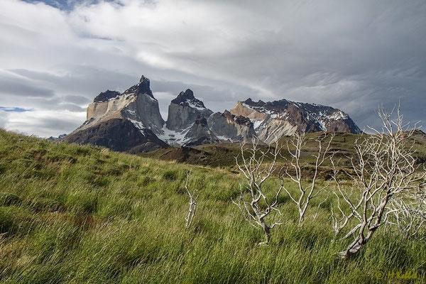 Chile: Cuernos del Paine