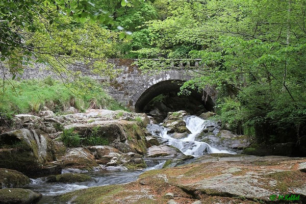 Brücke im Wicklow-Mountain-Nationalpark