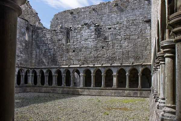 An der Askeaton Abbey