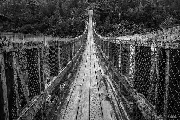 Chile: Brücke im Queulat Nationalpark