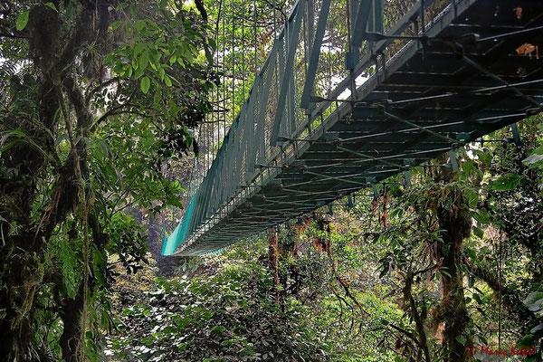 """Sky Walk"" Brücke im Monteverde Nationalpark"