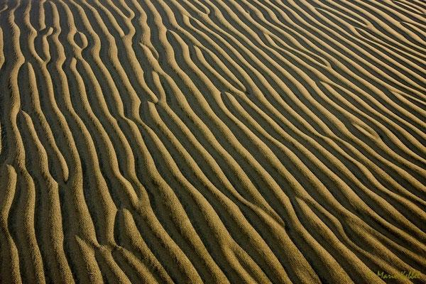 In der Nazca Wüste