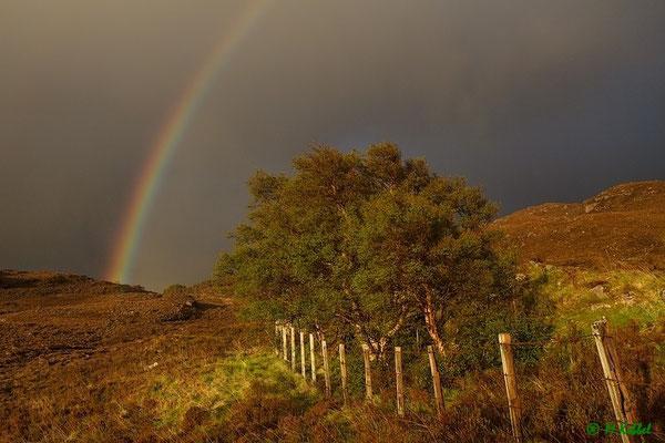 Regenbogen am Loch Torridon