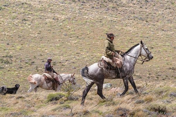 Argentinien: Gauchos