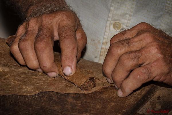 Torcedor (Zigarrendreher) bei der Arbeit