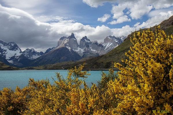 Chile: Lago Pehoé und Cuernos del Paine