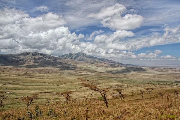 Am Ngorongoro Krater