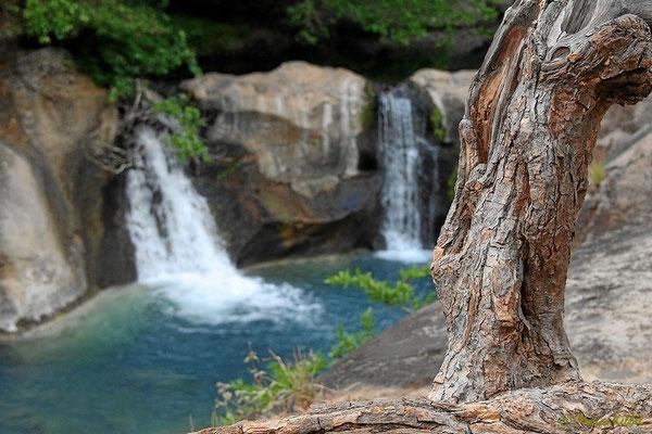 Wasserfall im Monteverde Nationalpark
