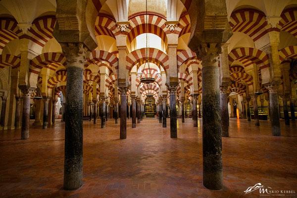 Die Hallen der Mezquita