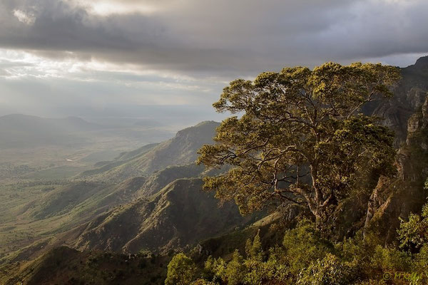 Blick vom Usambara Gebirge