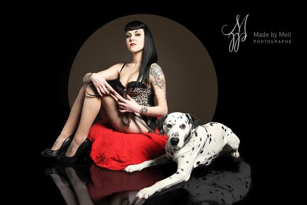 photographe chien studio, séance photo chien studio, portrait chien toulouse, photographe animalier toulouse