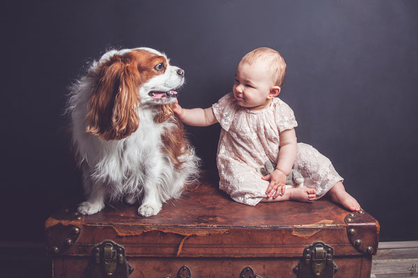 Séance photo bébé avec chien, photographe bébé Toulouse, portrait bébé 1 an