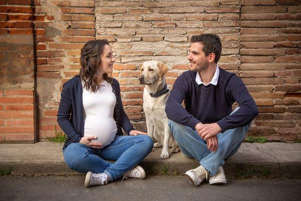 photographe chien studio, séance photo grossesse et chien studio, portrait chien toulouse, photographe animalier toulouse