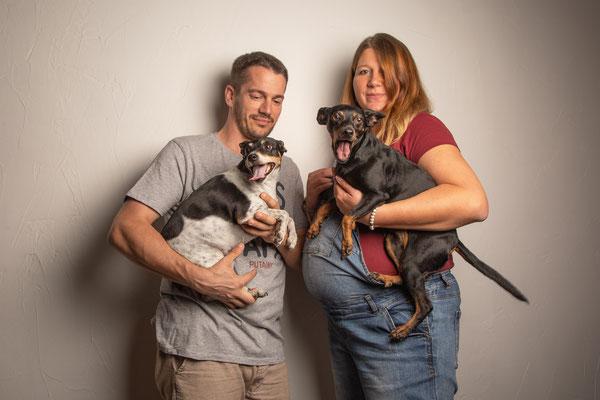 photographe chien studio toulouse, photo grossesse avec chien, portrait animalier, photographe animalier toulouse