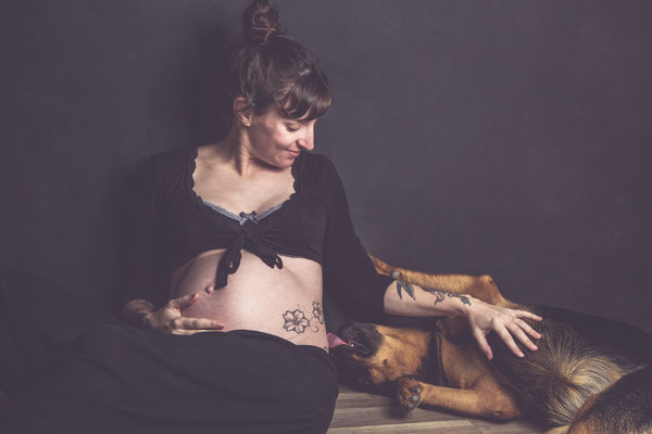 photographe chien studio toulouse, photo grossesse avec chien