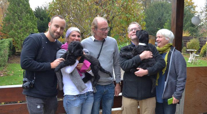 Hunde lassen Freundschaften entstehen
