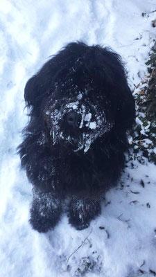 Emma liebt wie alle den Schnee