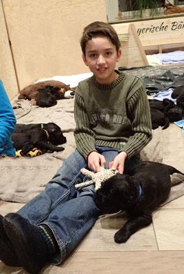 Und unser lieber Neffe Phillip mausert sich zum tollen Hundepfleger.