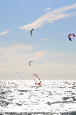 Surfer in der Bucht von Hyères