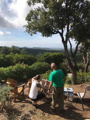 Besprechung mit dem Gartenbauunternehmer über die nächsten gestalterischen Schritte