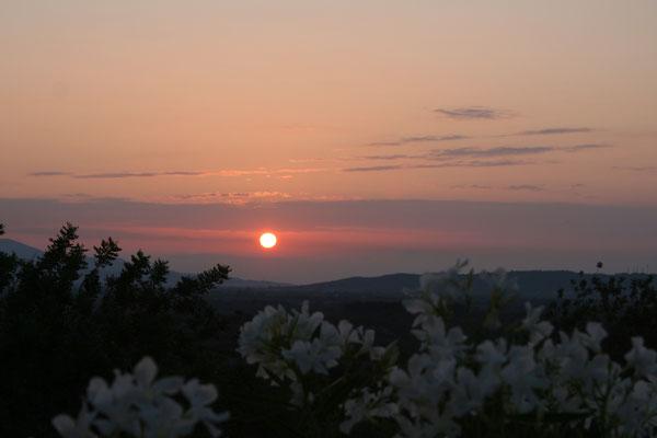 Uitzicht ochtend