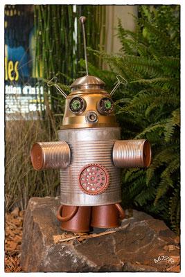 Les robots en concours