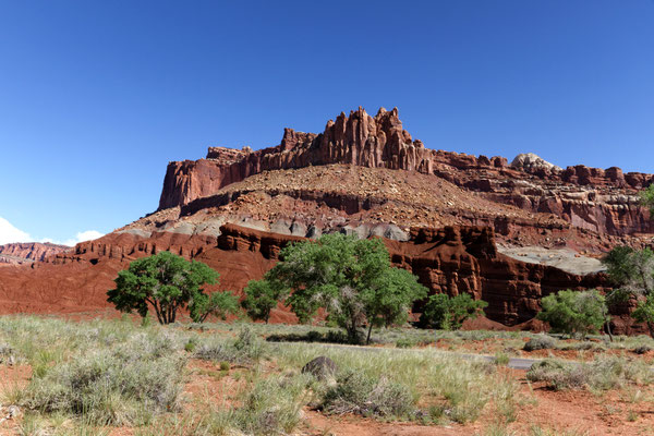 Capitol Reef NP