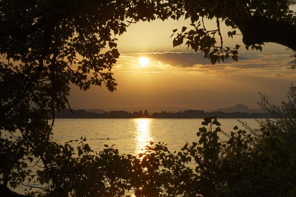 Sonnenuntergang über der Mettnau und dem Hegau