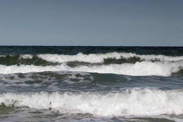 Ostsee bei Ahrenshoop