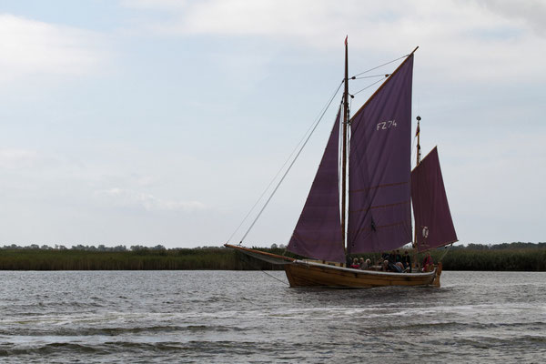 Altes Segelschiff in Boddenlandschaft