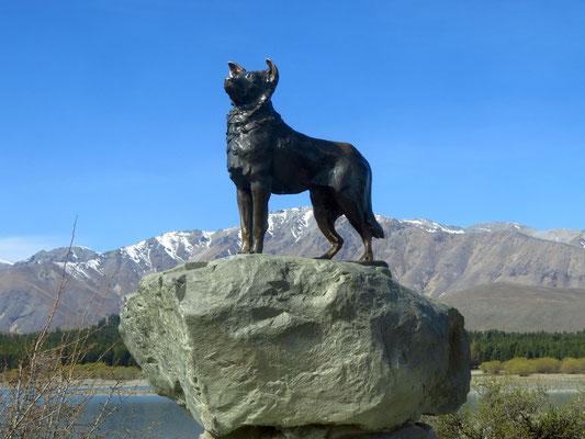 Denkmal für den Bordercollie  - memorial for the border collie