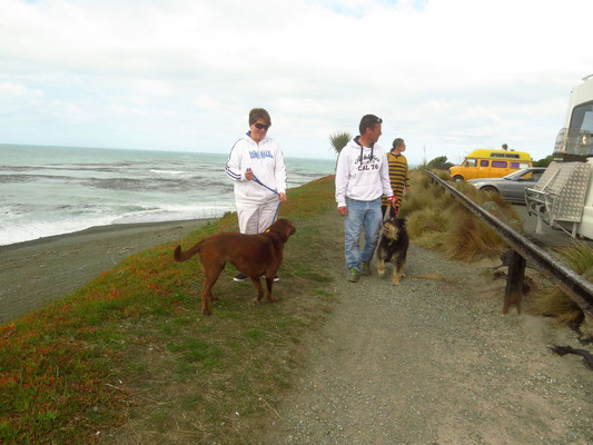 ein Spaziergang am Strand von Timaru  -  walking the dogs along the beach in Timaru