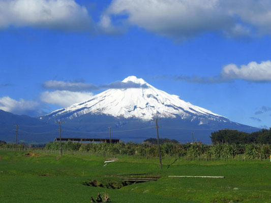 Mount Taranaki, you drive around it for days and it sticks out from all angles -  Der Taranaki, er sticht von allen Seiten heraus, wir haben zwei Tage gebraucht, bis wir ihn nicht mehr sehen konnten