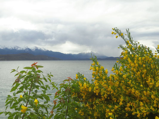 Die Gegend um Bariloche  -  the area around Bariloche