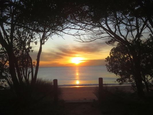 Sonnenaufgang im Abel Tasman Nationalpark  -  sunrise in Abel Tasman NP