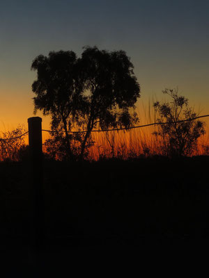 das Outback hat schöne Sonnenuntergänge  -  you get beautiful sunsets in the Outback