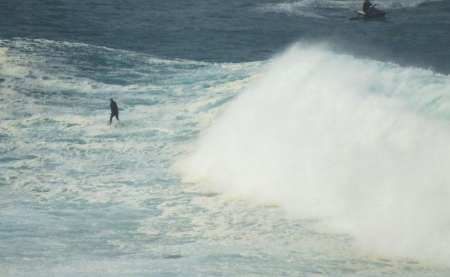 Selbstmordkandidaten  -  suicide surfers