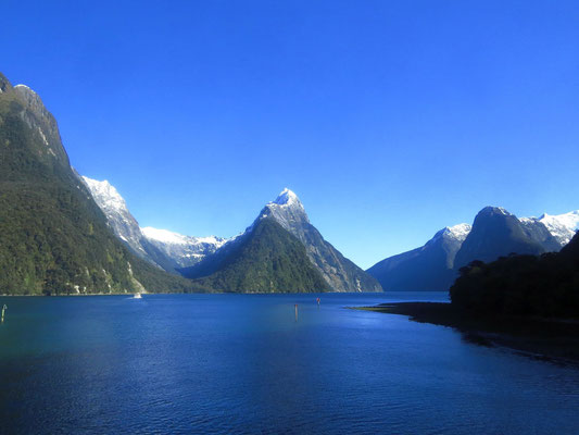 der berühmte Milford Sound  -  the famous Milford Sound