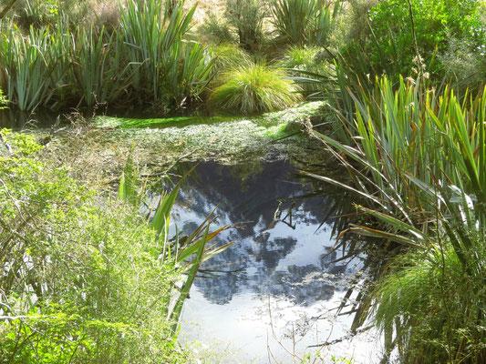 Mirror lakes  -  Spiegelseen