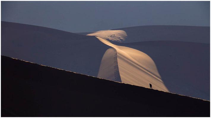 Unterwegs in den Dünen